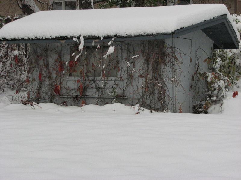 Snow2 017